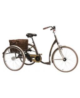 Tricycle adulte Vintage